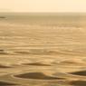 御興来海岸銀色の輝き