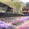 上神梅駅は花盛り