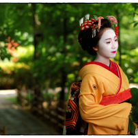 小江戸川越 舞妓さん