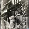 「蜘蛛の巣の夢」 小江戸川越散歩132