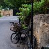 Dreamton~bicycle~