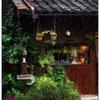 「レインコート」 小江戸川越散歩139