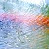 魚群と波紋