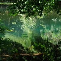 夏の丸池様-1