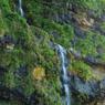 垂水の滝 in 能登