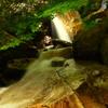 滋賀 楊梅の滝
