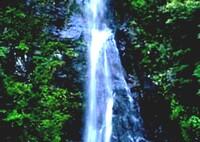 轟渓谷の揚柳の滝