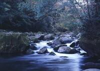 菊池渓谷の流れ