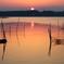 印旛沼・朝景 - 朝彩への期待 -