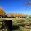 ❜17 科学万博記念公園の秋