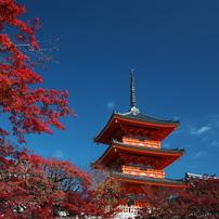 京都紅葉東山界隈の散策