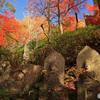 秋の石仏 -T