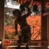 秋の三瀧寺