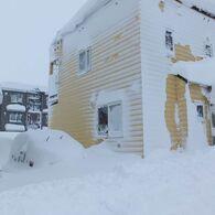 雪の猛威!