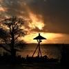 夕焼けの蛇の目傘