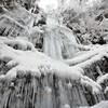 氷瀑(四王寺の滝 英彦山にて)