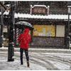 「みんな雪の中05」小江戸川越散歩143