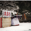 「淡雪」小江戸川越散歩150