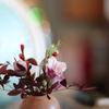 テーブルの花(^。^)
