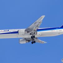 新千歳の飛行機たち