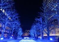 とても綺麗な冬のイルミネーション。(^-^)