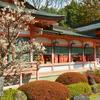 西院春日神社の白梅