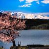 山と暮らす ~麗らかな春~