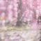 枝垂れ梅に微笑む