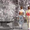 春の京都を歩く。。