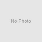 #660 自転車のある風景