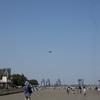 城南島海浜公園・1