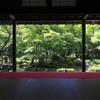 圓光寺の緑