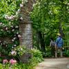 薔薇の門。