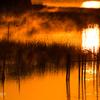 燃える印旛沼