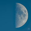 月面 V X L