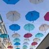 カラフル雨傘ロード