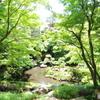 新緑の次郎弁天池