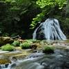 新緑片鞍滝