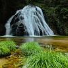 新緑片鞍滝 3