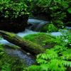 Beautiful stream...
