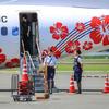 熊本空港にハイビスカス