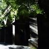 京都 南禅寺 朝日を浴びる水路閣