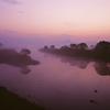 フィルムで撮る江津湖の夜明け