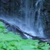 神谷の滝 下段滝下