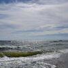 稲毛の浜にて