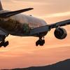夕暮れ時  Boeing 777-200  「HELLO 2020 JET」
