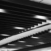 東京駅の天井Ⅰ