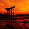 厳島神社黄昏時