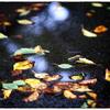 「秋の気配」小江戸川越散歩185
