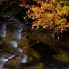 奥志賀雑魚川の秋